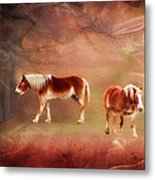 Foggy Day - Featured In Funky Images Group Metal Print