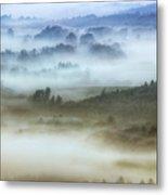 Foggy Flatlands - Blue Ridge Parkway Metal Print