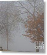 Foggy Lake View Metal Print