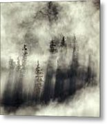 Foggy Landscape Stephens Passage Metal Print