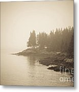 Foggy Maine Coast Metal Print by Diane Diederich