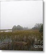 Foggy Marsh Metal Print