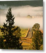 Foggy Morning Drive Metal Print