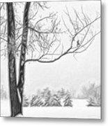 Foggy Morning Landscape - Fractalius 5 Metal Print by Steve Ohlsen