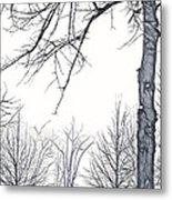 Foggy Morning Landscape - Fractalius 6 Metal Print