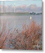 Foggy Morning On The Sacramento River Metal Print