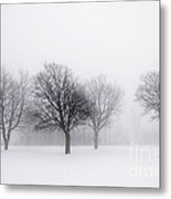Foggy Park With Winter Trees Metal Print