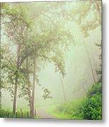 Foggy Path - Blue Ridge Parkway Metal Print