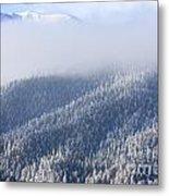 Foggy Peak Metal Print