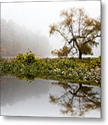 Foggy Reflections Landscape Metal Print