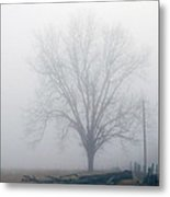 Foggy Sunday II Metal Print