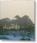 Foggy Sunny Florida Sunrise Metal Print