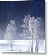 Foggy Sunrise In Yellowstone National Park Metal Print