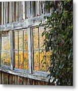 Foliage Reflections Metal Print