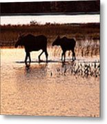 Following Mom Metal Print
