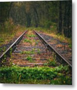 Following The Tracks Metal Print