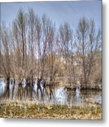 Folsom Dried Pond  Metal Print
