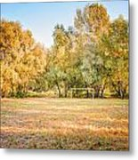 Football Playground In The Forest Metal Print
