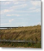 Footbridge Through The Dunes Metal Print