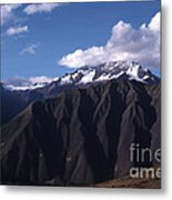 Foothill Of The Andes Metal Print