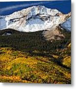 Foothills Of Gold Metal Print