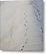 Footprints And Pawprints Metal Print