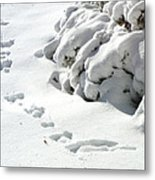 footprints in the Snow Metal Print