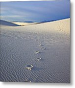 Footprints Metal Print by Mike  Dawson