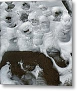 Footprintscomp 2009 Metal Print
