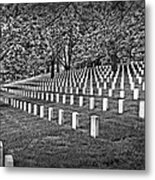 For Our Nation Metal Print