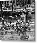 For The Birds Bw1 Metal Print