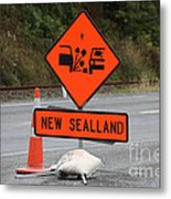 For Those Who Traveld Through New Zealand Metal Print