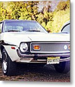 Ford Mustang New Jersey Usa Metal Print