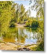 Ford Surrounded By Trees Metal Print