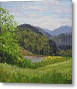 Ford's Pond In Spring Metal Print