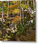 Forest Above The Cave Metal Print