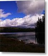 Forest And Clouds Metal Print