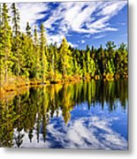 Forest And Sky Reflecting In Lake Metal Print by Elena Elisseeva