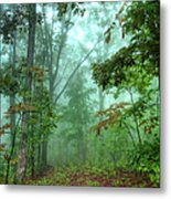 Forest Deep - Forest Green Metal Print