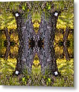 Forest Disaster C Metal Print