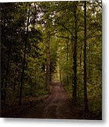 Forest Entry Metal Print