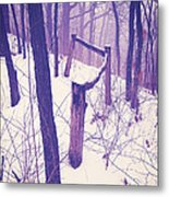 Forest Fence Metal Print