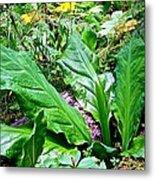 Forest Foliage Metal Print