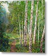 Russian Forest Footpath Metal Print