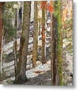 Forest For The Trees Metal Print