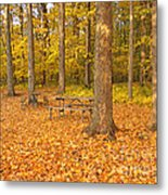Forest Gold Metal Print
