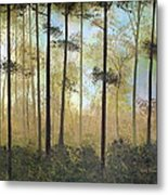 Forest Harmony Metal Print