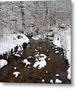 Forest Hill Creek Metal Print