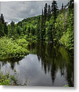 Forest Lake - Quebec - Canada Metal Print