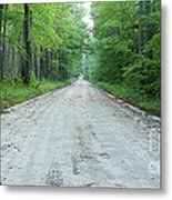 Forest Lane Metal Print